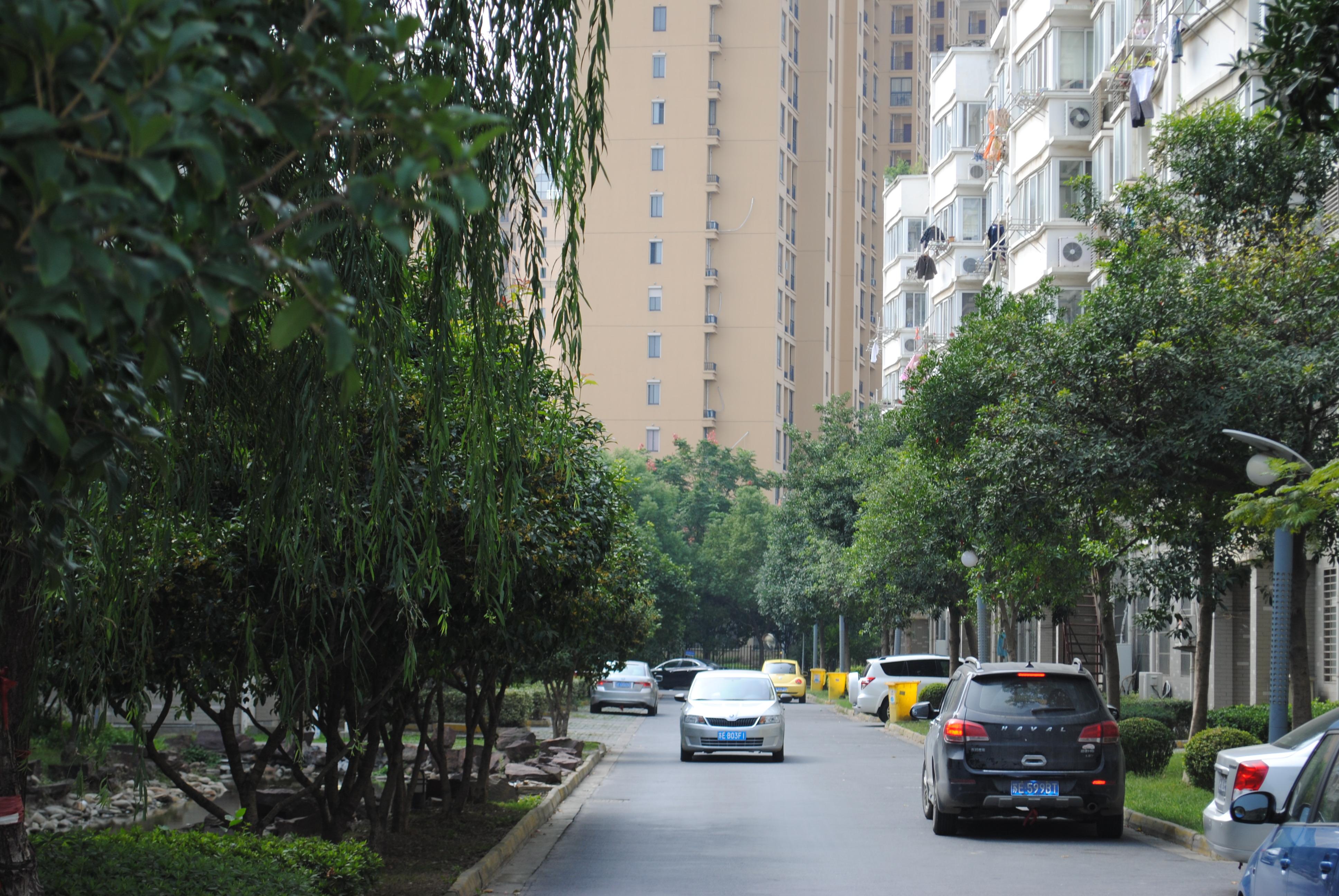 251太湖小区5楼【精装 地铁口】