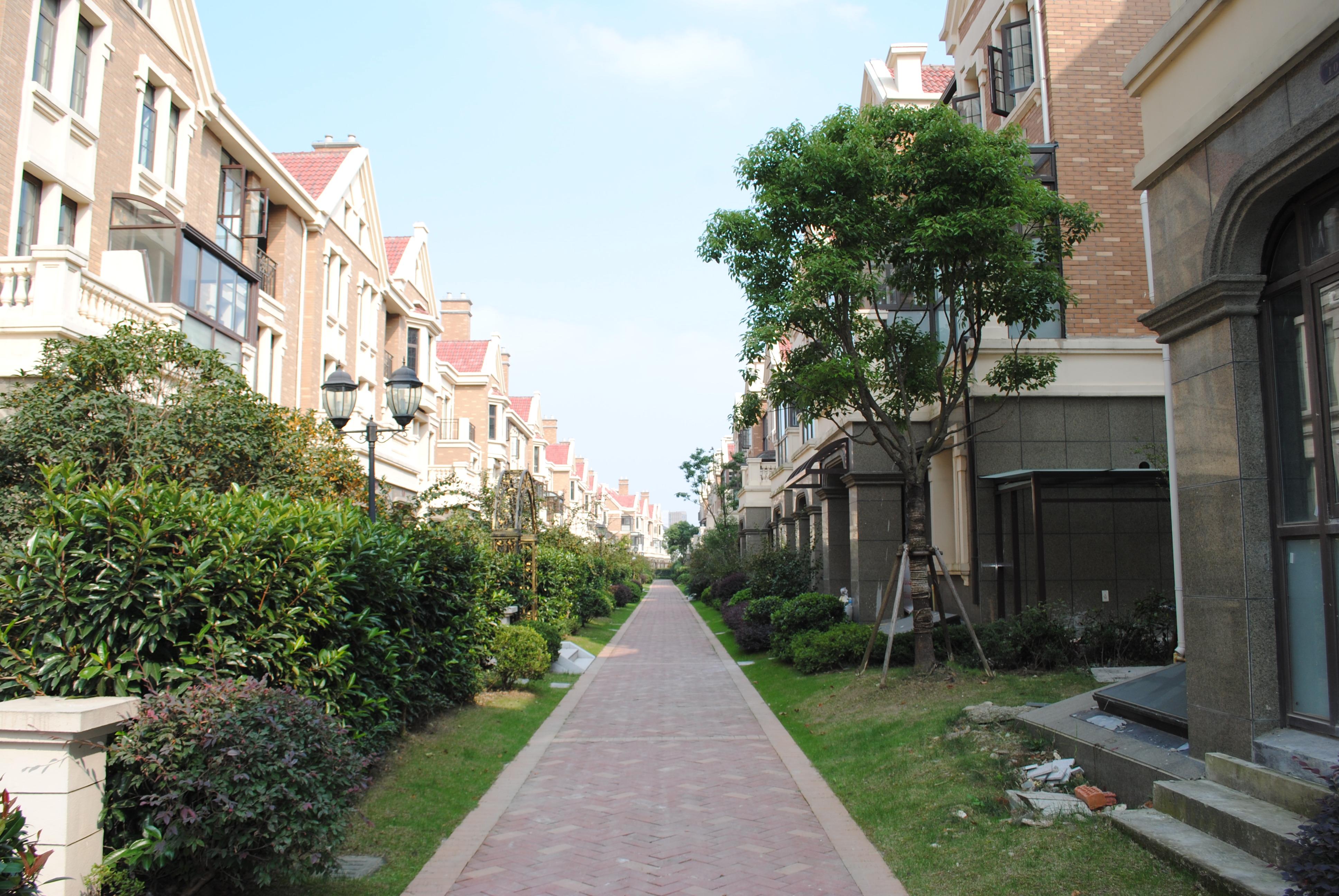 %滨河名墅联排  有多套 不同户型 不同楼层  性价比极高