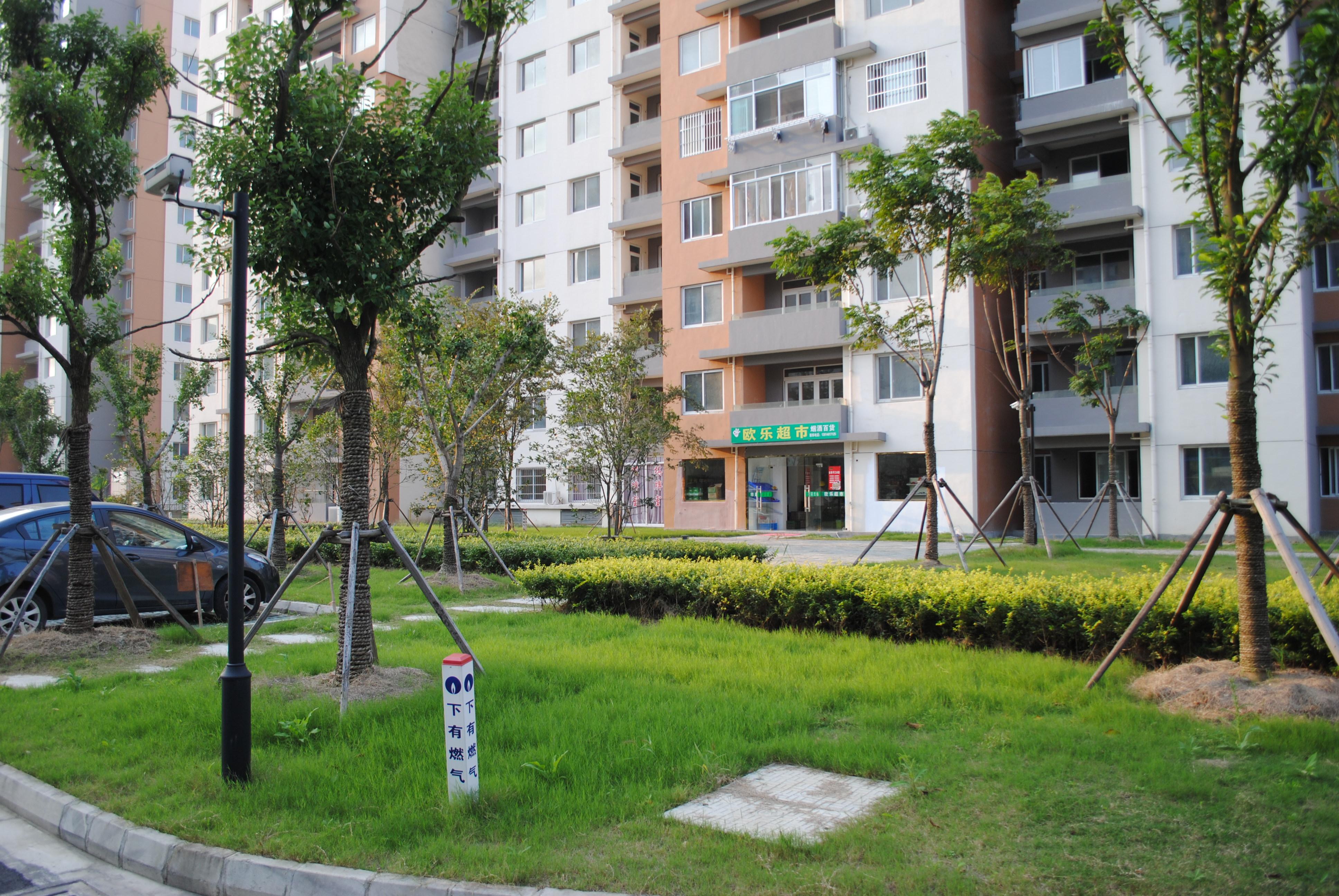 340平安苑1楼【拎包入住】
