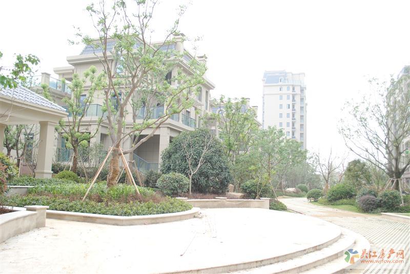 wangql星宝花园双拼别墅东边套 有证