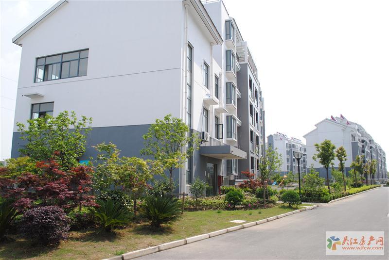 w 同里紫莱华府 南北通透 未来对接上海 自住精装修 满2年 急卖 价格可谈