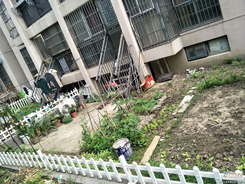 格林华城旁边 精装2房 可做3房 带大院子 看房方便